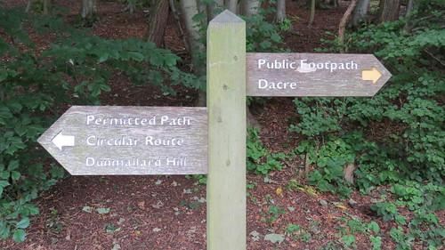 Dunmallard Hill Woodland Walk