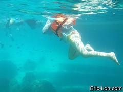 Raya Island Phuket snorkeling (23) (Eric Lon) Tags: sea mer fish swim stars thailand island nager holidays jellyfish ile diving snorkeling corals poissons etoiles coraux meduse plonger ericlon