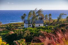 ES8A2934 (repponen) Tags: ocean travel hawaii maui hana canon5dmarkiii