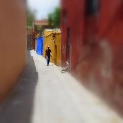 alley walk (msdonnalee) Tags: mexico alley alleyway mexique mexiko messico callejon narrowalley photosfromsanmigueldeallende fotosdesanmigueldeallende