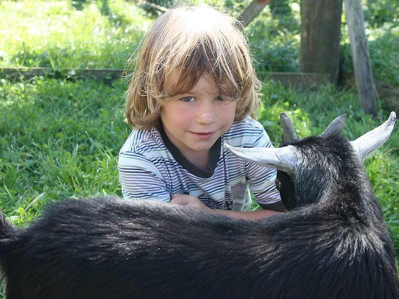 Lindenhof Hausmann - Junge streichelt Ziege
