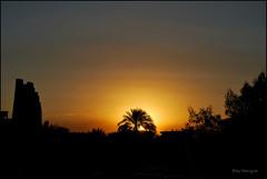 Sunrise in Kom Ombo (Eloy Rodríguez (+ 5.300.000 views)) Tags: sun sunrise pyramid egypt nile monumentos pyramids egipto monuments pirámides komombo nilo thenile komombotemple falucas egyptpyramids rionilo templokomombo doubleniceshot eloyrodríguez mygearandme mygearandmepremium mygearandmebronze mygearandmesilver mygearandmegold mygearandmeplatinum pirámidesdeegipto rememberthatmomentlevel4 rememberthatmomentlevel1 rememberthatmomentlevel2 rememberthatmomentlevel3 rememberthatmomentlevel9 rememberthatmomentlevel5 rememberthatmomentlevel6 rememberthatmomentlevel10