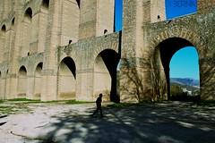 Passeggiando per i Ponti della Valle (Fotografie di Bernardo.) Tags: acquedottocarolino valledimaddaloni