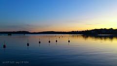 Hotellviken Saltsjöbaden (Papa Razzi1) Tags: blue winter sunset sea water december sweden stockholm saltsjöbaden hotellviken