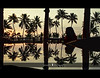 coconut trees, a woman and a reflecting dining table..(explored, frontpage) (PNike (Prashanth Naik)) Tags: trees sunset sky orange woman sun india color reflection glass silhouette lady nikon asia view houseboat kerala symmetry backwaters alleppey cocount d7000 pnike