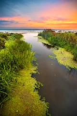 Calm Before The Storm (Extra Medium) Tags: sunset orange reflection green vertical reeds ventura magazinecover singhrayrgnd leewideangleadapter standingontopofthebridge