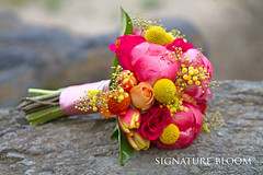 San Jose Bridal Bouquet, Hot Pink & Yellow (Signature Bloom) Tags: pictures pink flowers wedding decorations summer flower floral rose yellow coral for design designer events sanjose images peony tulip designs florist vendor siliconvalley bouquet weddings bridal mimosa decor peninsula southbay ideas weddingflowers bouquets hotpink floraldesign sanjoseca florists specialevents weddingideas bridalflowers 95138 weddingdecorations floraldesigner flowerdesign craspedia 95121 weddingflorist weddingfloral peonybouquet coralpeony weddingvendor summerbouquets flowersforwedding sanjoseflorist hotpinkwedding yellowbouquets sanjoseweddingflowers signaturebloom wwwsignaturebloomcom bridalflorist hotpinkbouquets hotpinkandyellowwedding