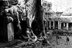 It's a Holiday in Cambodia (©skarson) Tags: tree canon eos angkorwat ii 5d siemreap tombraider mrk cambodi canoneos5dmrkii