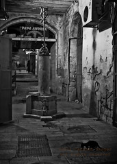 2011-12-14-42-349.jpg (Carsten Saager) Tags: bw night israel jerusalem