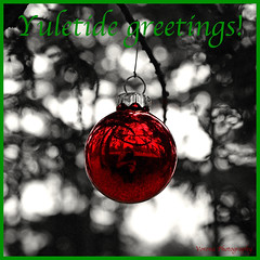 Yuletide Greetings () Tags: park christmas trees usa holiday reflection nature public bulb america photo washington nice holidays state pacific northwest image display space south united decoration picture ornament photograph tacoma states
