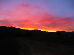 Look West (bhinz57) Tags: pink sky orange west canon december dusk sunsets bluesky pointandshoot gilroy hinz happynewyear 2011 felizaonuevo sunsetmode gilroyca