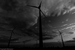 Lingen - Windkraftrder sw-0284.jpg (milanpaul) Tags: germany deutschland wolken tokina1224 schwarzweiss lingen niedersachsen 2011 windkraftrder canoneos450