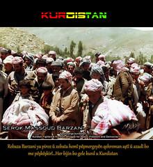 Serok Massoud Barzani (Kurdistan Photo ) Tags: iran iraq filckr airlines turkish turk kurdistan irak kurdish barzani kurd kurdi newroz  massoud kurdo  warplanes kurden peshmerge  serok  kurdiskaa kurdistan4all karkuk krdistan   kurdene kurdistan2008 sefti kurdistan2006    kurdokurdskurdiska    kurdn kurdperwer jansafti