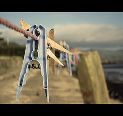 Beach_Clothesline (RL Mulholland) Tags: wood blue ireland macro beach metal azul closeup composition cord wooden spring focus pretty dof bokeh pastel playa rope plastic laundry pointandshoot clothesline pegs depth compact clothespins irlanda blackrock countylouth dundalk canonpowershots95