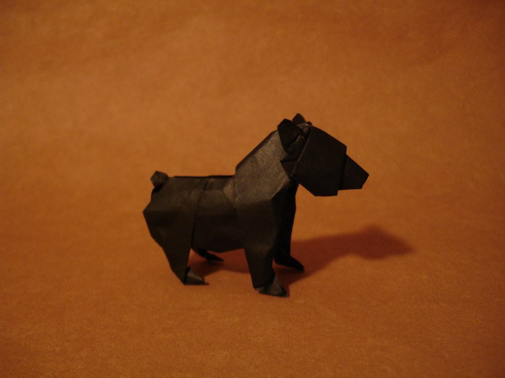 The Worlds Best Photos Of Mammal And Origami Flickr Hive Mind Bear Diagram Cub 1999 Shukikato Tags Book