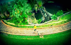 Above it all (navejo) Tags: trees man green grass yellow walking mexico hotel pond fromabove cozumel 2011