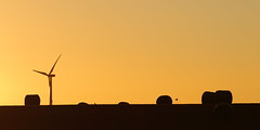 Wind Tower (blachswan) Tags: sunset australia victoria hay bales magpies windtower waubra waubrawindfarm