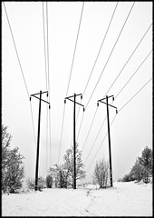 Poled (if Photography) Tags: blackandwhite white snow black power cables ifphotography ifprints