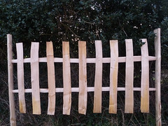 """Feather edge fence design • <a style=""""font-size:0.8em;"""" href=""""http://www.flickr.com/photos/61957374@N08/6713767111/"""" target=""""_blank"""">View on Flickr</a>"""