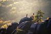 on top (Dennis_F) Tags: autumn light people sun fall nature colors berg rock zeiss germany landscape deutschland schweiz switzerland evening colorful sony herbst natur sachsen fels climber fullframe dslr landschaft bunt saxon climbers farben 135mm sächsische sächsischeschweiz abends sonnenlicht 13518 a850 sonyalpha kletterer sonydslr vollformat cz135 zeiss135 dslra850 sonya850 sonyalpha850 alpha850 sony135 sonycz135