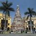 L'albero di Natale messo nella Plaza de Armas a Lima