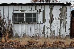 Unraveling at the Seams (skipmoore) Tags: peeling paint nevada shed lovelock