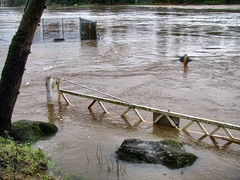 Gate (For Bunk) Tags: park oregon river portland gate flood submerged 2012 oregoncity clackamas clackamette
