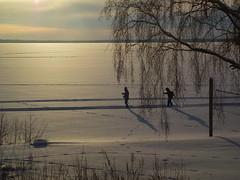 DSCF7702a (SeppoU) Tags: winter snow suomi finland lumi talvi hme copyleftby seppouusitupa