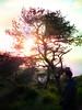 Mount Carmel (+---:: :: :: Paul Aziz :: :: ::---+) Tags: israel bahai haifa bahaullah бахаи הבהאים बहाई البهائية بهاءالله 巴哈伊 بهائی バハイ بہائی