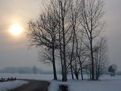 controluce nella neve (solonanda non c' pi) Tags: winter snow campagna neve inverno thegalaxy powerofart artistsoftheyear artistoftheyearlevel3 artistoftheyearlevel2 artistoftheyearlevel4 musictomyeyeslevel1 rememberthatmomentlevel1 magicmomentsinyourlife rememberthatmomentlevel2 rememberthatmomentlevel3