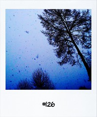 """#DailyPolaroid of 2-2-12 #126 #fb • <a style=""""font-size:0.8em;"""" href=""""http://www.flickr.com/photos/47939785@N05/6840597125/"""" target=""""_blank"""">View on Flickr</a>"""