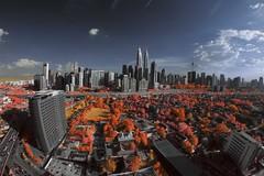 Kuala Lumpur Autumn Infrared (Nik Najmuddin Nik Ariff) Tags: autumn infrared kualalumpur kl kampungbaru kualalumpurinfrared poknikphoto autumninfrared niknajmuddin klinfrared kampungbaruinfrared