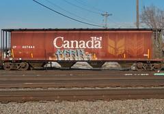 SERK x CARL (stateofoppression) Tags: minnesota train bench graffiti minneapolis trains tags carl boxcar piece cp nr mn hopper railfan freight rollingstock serk foamer grainer benching freightporn fuckinstagram