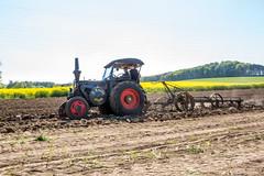 -Bulldog- (Fotos aus OWL) Tags: traktor landwirtschaft oldtimer lanz pflug pflgen traktorentreffen