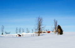 farmhouse in northern   iceland (bjossi1. Have a nice day my friends :-)) Tags: blue winter sky snow farmhouse canon landscape frozen iceland outdoor north serene