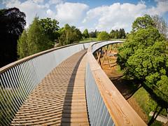 Treeway I - LR6-5161606-web (David Norfolk) Tags: uk england unitedkingdom olympus gloucestershire westonbirt gb epl7