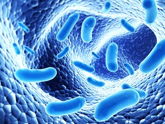 What Are Probiotics? (mariaruiz5) Tags: macro toxic danger spread 3d hiv cell science dirty system medical problem aid health research human medicine organic sickness aggression microscopic biology bacteria healthcare virus microbiology flu disease colony infection poisonous illness outbreak bacterium veterinary scientific harmful microbe epidemic pathogen organism vitality nocuous