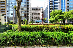 downtown, Nagahori-dori (street), Osaka (jtabn99) Tags: road street sky japan sidewalk   nippon osaka  fineday  nagahoridori  localtonemapping 20160512