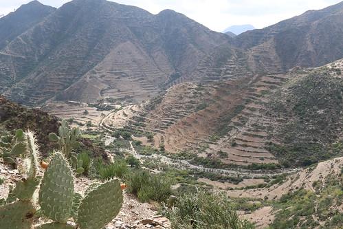 Mountains near Asmara