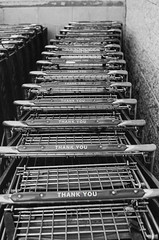 Thank You! (David Uthe) Tags: film nikon negative scanned f2 acros100 photomic
