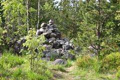 NRG3630 (P Bairos) Tags: norway forest norge skog noruega frogner varden akershus floresta srum bairos vardefjellet nkond800
