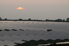 Solar panels at sunset (christina.marsh25) Tags: sunset science electricity solarpanels