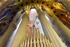 Canne d'organo (honeycri) Tags: barcelona nikon catalunya organo sagradafamilia barcellona spagna gaud catalogna antonigaud modernismocatalano honeycri niknd3200