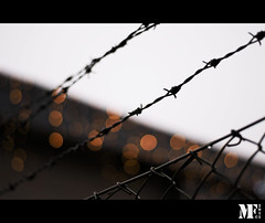 Happy fence friday people. (Mattias Fahlgren) Tags: 50mm nikon bokeh chainlink barbedwire dots nikkor hff 18g d5000 fencefriday