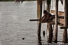 delta-26 (Victor Manuel 22) Tags: river sailing selva craft delta adventure jungle ros navegando artesania aventura warao orinoco indigena indegenous