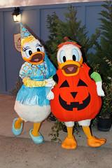 Daisy Duck (Fantasyland)