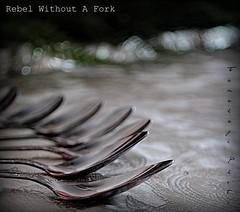 Rebel Wihout A Fork  { Explored } 2011-12-01 (tamahaji) Tags: life silver rebel still all dof bokeh no fork spoon without bokehlicious
