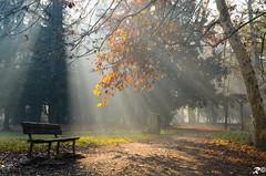 Aspettando la luce [EXPLORE] (Riccardo Brig Casarico) Tags: morning sun colors wow sole colori brig riki brigrc