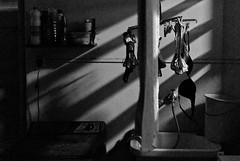 (leo.eloy) Tags: digital zeiss photography casa mulher sombra varal lavanderia calcinha 2011 intimidade zf2 clélia1786apto3 vidadelapa distagont35mmf2