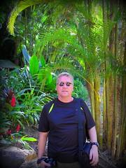 ~~WaimeaBotanicalGarden#10~~ (TravelsThruTheUniverse) Tags: tropicalplants oahuhawaii tropicalgardens tropicalfoliage waimeavalleybotanicalgarden tropicallandscapes waimeavalleyoahu waimeaparkhaleiwaoahu